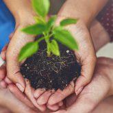 Umwelt und Sozialprojekte