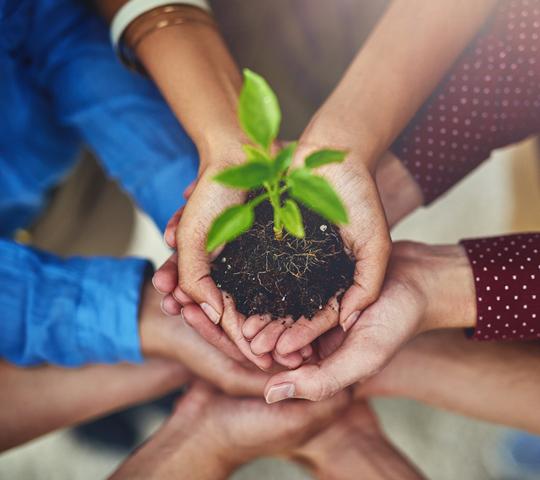 Sozialprojekte und Events